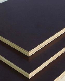 Plywood Tabaka Ölçüleri